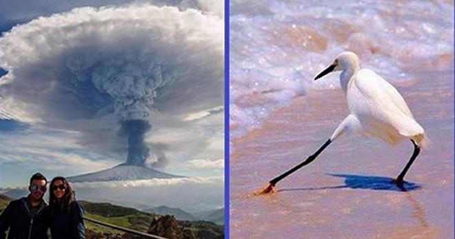 Картинки по запросу селфи на фоне вулкана